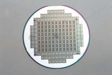 Silicon wafer with silicon chips  1984.