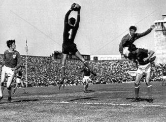 Ireland v Hungary  Dublin  June 1969.