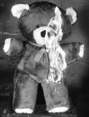 Burning teddy  11 December 1985.