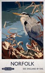 'Norfolk'  BR poster  1948-1965.