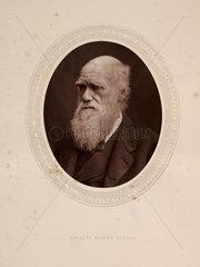 'Charles Robert Darwin'  1878.