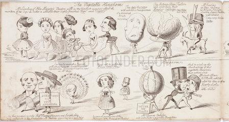 'The Vegetable Kingdom'  1850.