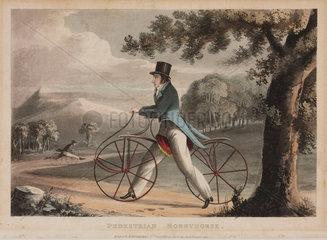 'Pedestrian Hobbyhorse'  1819.
