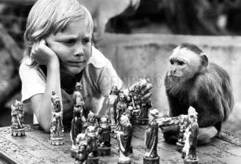 Boy and monkey playing chess  Manchester  September 1973.