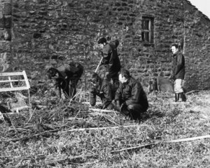 Police search for clues near a shallow grave  Yorkshire  c 1980s.