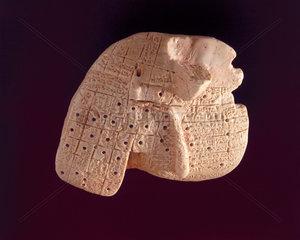 Babylonian model of a sheep's liver  2050-1750 BC.