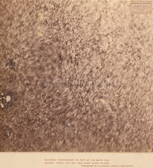 Photographic close-up of the Sun  10 May 1878.