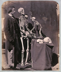 Reginald Southey with skeletons and skulls  1858-1859.