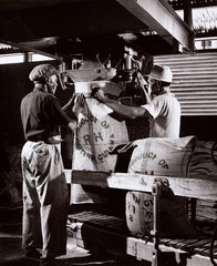 Two workers fill sugar bags at Bookers  Georgetown  Guyana  1958.