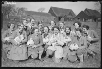 Young women with chickens  Welwyn  Hertfordshire  21 February 1933.