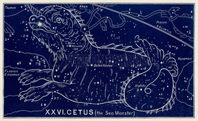 The constellation of Cetus (the Sea Monster)  1895.