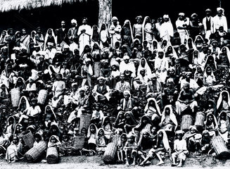 Tea pickers on an English and Scottish Co-op Society tea estate  India  c 1947.
