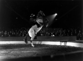 Circus performer riding on a rearing horse