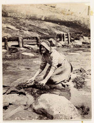 Woman scrubbing by the water's edge  c 1905.