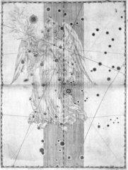 The constellation Virgo  1603.