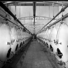 Extreme long shot of conditioning tanks  Charringtons Brewery  1960.