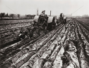 Fordson tractors hauling two-furrow and three-furrow Ransome ploughs  c 1942.