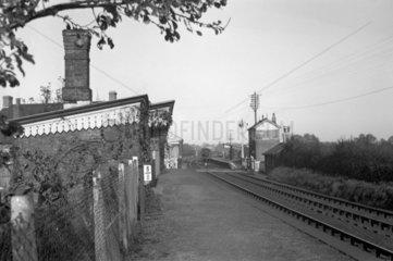 Tram Inn Station looking north  29 October 1950.