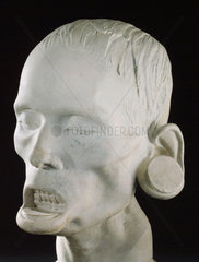 Phrenological head of a South American Indian  1826.