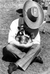 Yorkshire terrier in curlers  June 1976.