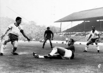 Spain v Switzerland  World Cup  Sheffield  15 July 1966.