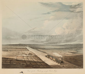Chat Moss  1831.