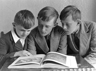 Three boys reading a book  c 1925-1935.