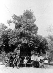 Family sitting beneath an old oak tree.