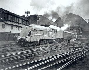 Wild Swan'  steam locomotive  class 4-6-2 engine No.4467  c 1939.