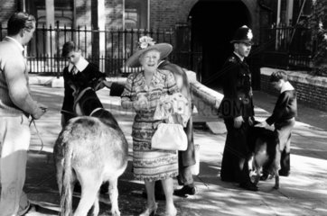 Animal blessing service  Covent Garden  1967.