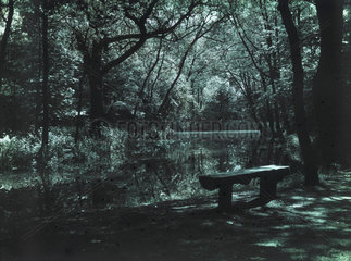 Water and bench  c 1910-1915.