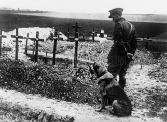 A soldier and his dog on the Western Front  France  1914-1918.