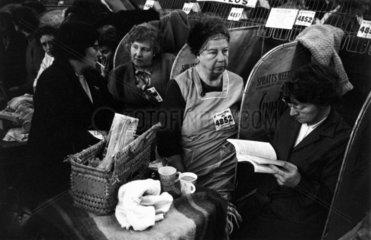 Cruft's Dog Show  London  1968.