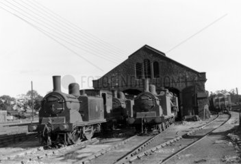 Steam locomotives and shed  Scotland  c 1930.