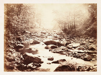 A sunlit stream  c 1855.