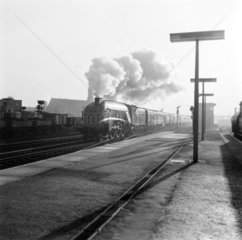 'Flying Scotsman' train  pulled by 'Miles Beevor' at Doncaster  c 1957.