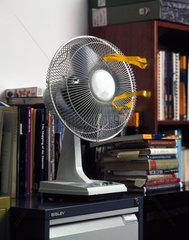 Fan in front of a bookshelf  1997.