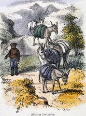 'Mining Districts'  c 1845.