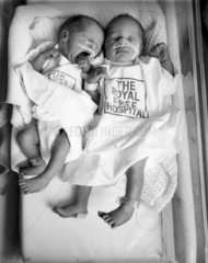 Test tube twins  Royal Free Hospital  Manchester  28 April 1982.