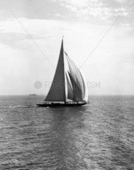 The yacht Shamrock V  Southend  Essex  27 May 1931.