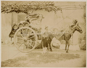 A deflated balloon being carried on a horse-drawn cart  1885-1890.