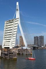 Rotterdam  Niederlande  Stadtansicht mit der Erasmusbruecke