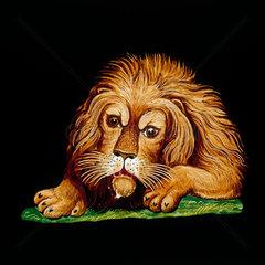 Lion  hand-coloured magic lantern slide  19th century.