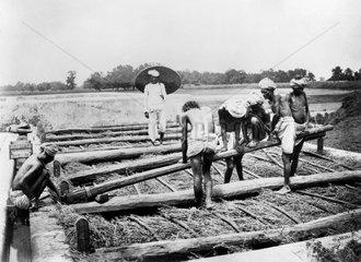 Loading a vat with indigo  Allahabad  India  1877.