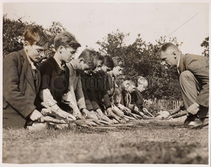 Children clipping a lawn  4 November 1933.