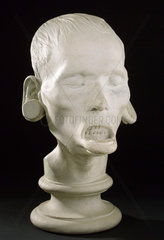 Phrenological head  Edinburgh  1826.