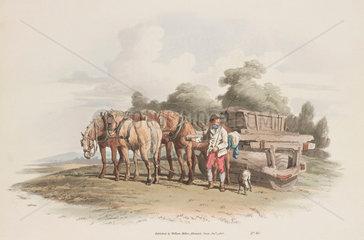 'The Grass Roller'  1808.