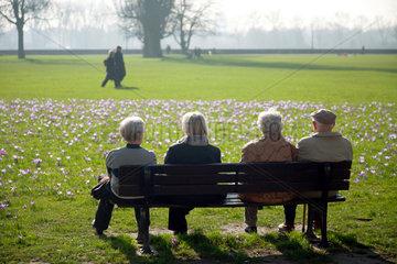 Duesseldorf  Deutschland  Senioren auf einer Parkbank und betrachten bluehende Kroskusse im Rheinpark