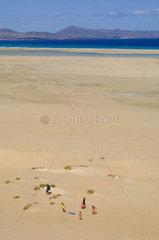SPAIN - CANARY ISLANDS - FUERTEVENTURA