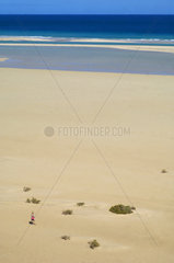 SPAIN - CANARY ISLANDS - FUERTEVENTURA